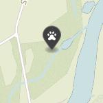 Animalia na mapie