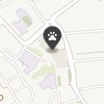 Leopardus na mapie