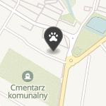 4 Animals na mapie
